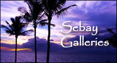 Sebay Galleries